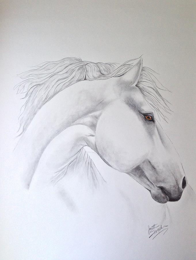 Cavallo by Joette Snyder