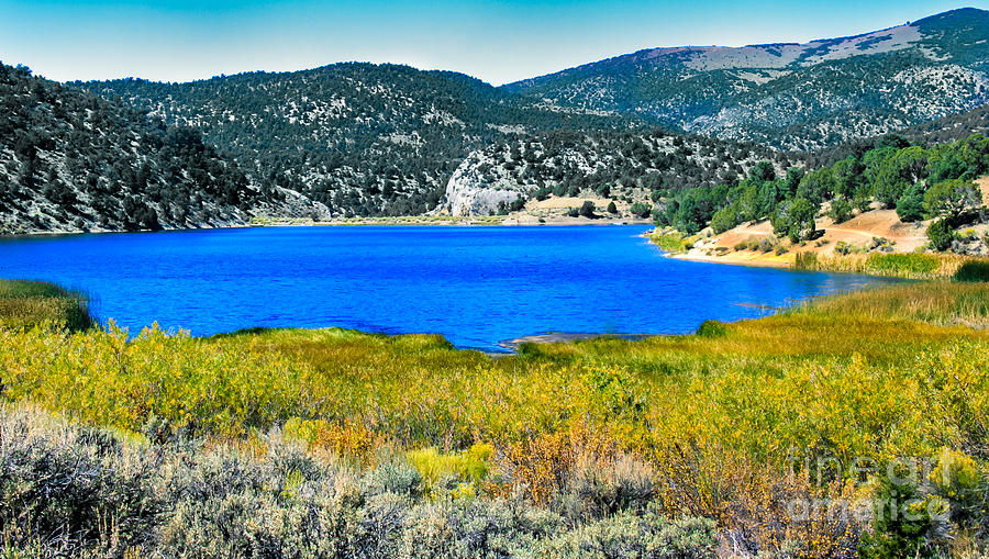 Fall Color Photograph - Cave Lake by Robert Bales