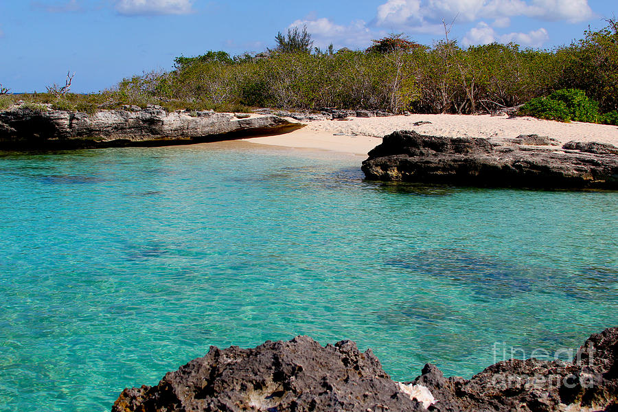 Beach Photograph - Cayman Beach by Carey Chen