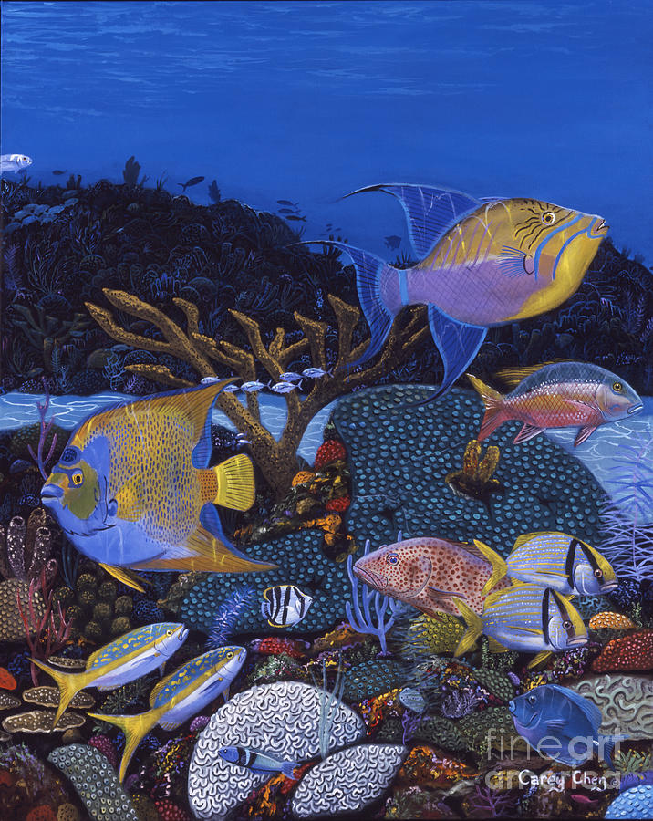 Trigger Fish Painting - Cayman Reef 1 Re0021 by Carey Chen