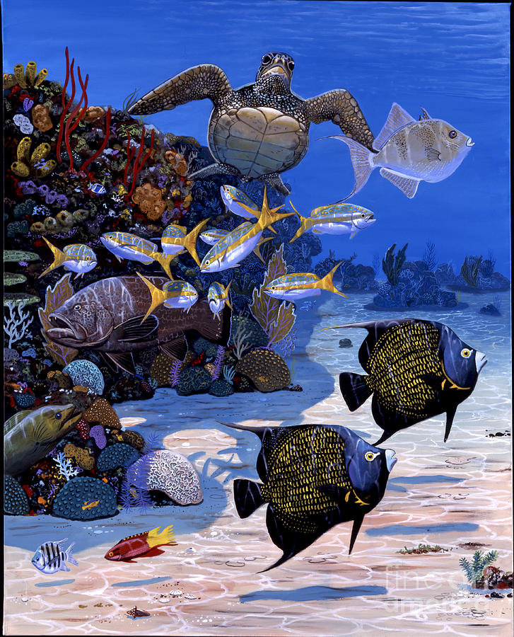 Turtle Painting - Cayman Reef Re0024 by Carey Chen