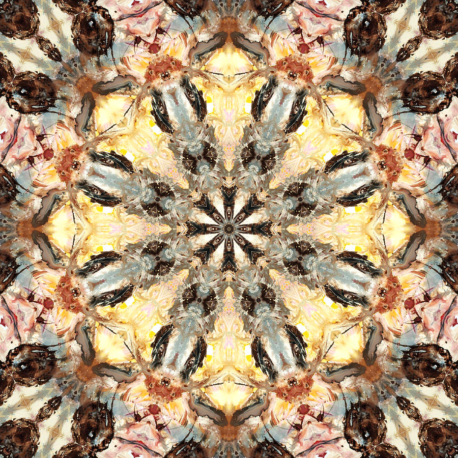 Mandala Digital Art - Cecropia Sun 5 by Lisa Lipsett