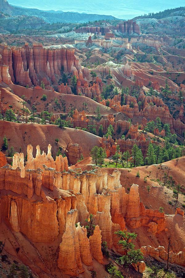 Cedar Breaks National Park II Photograph by Pavliha
