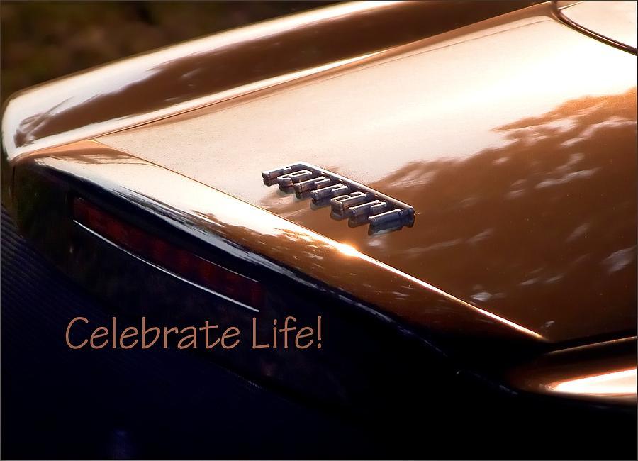Celebrate Life 21205 Photograph