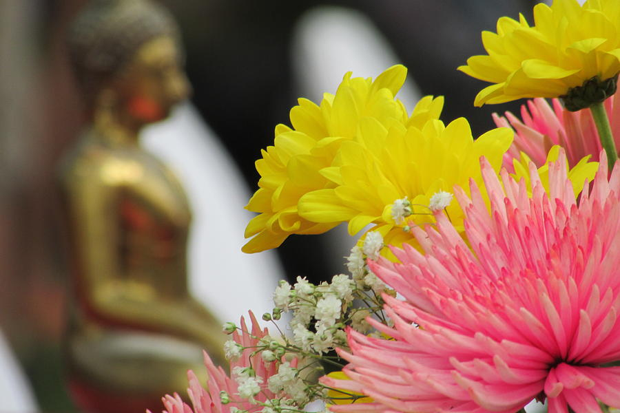 Flowers Photograph - Celebrating The Thai New Year by Jason Denis