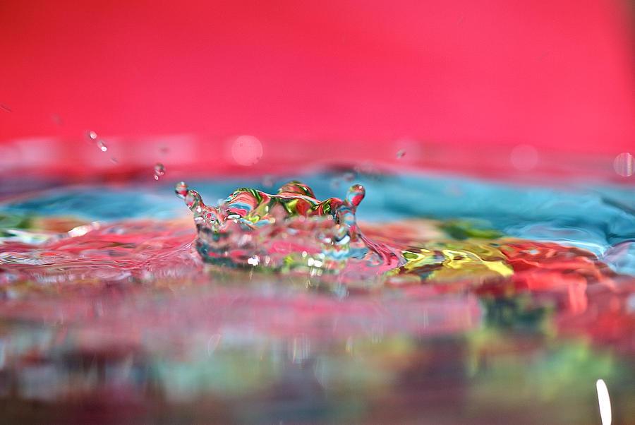 Celebration Photograph - Celebration by Lisa Knechtel