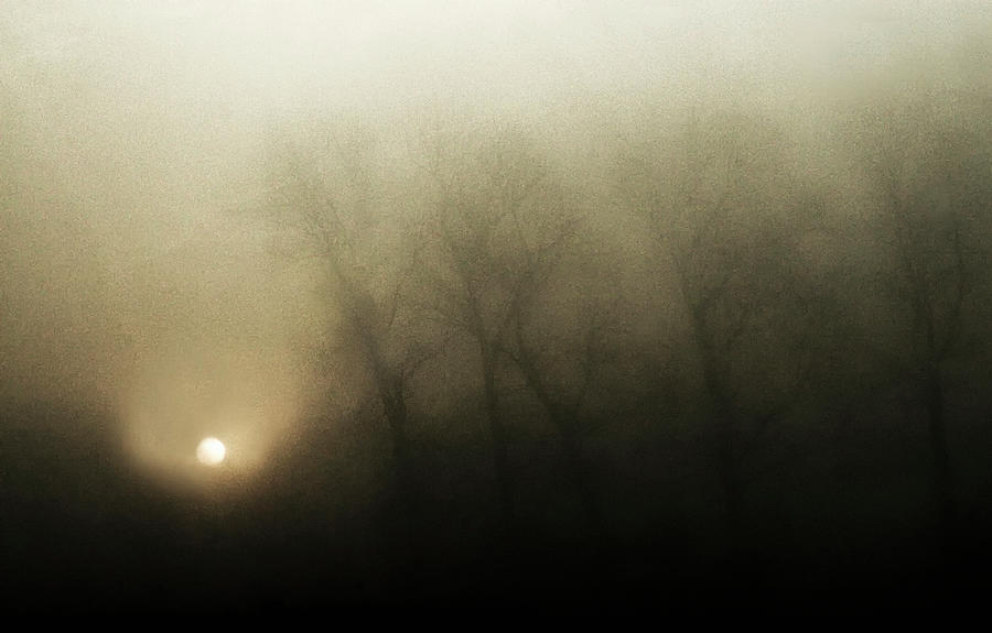 Dawn Photograph - Celestial Melody To The Earth by Yvette Depaepe