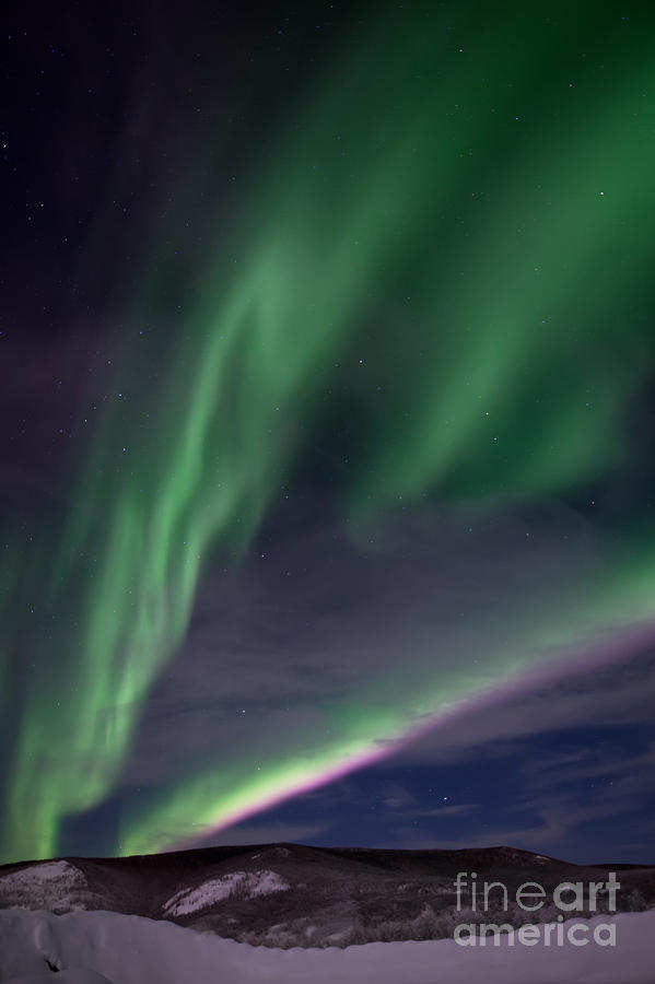 Snowy Photograph - Celestial  by Priska Wettstein