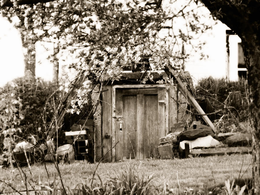 Old Time Photograph - Cellar Door by Andrea Dale