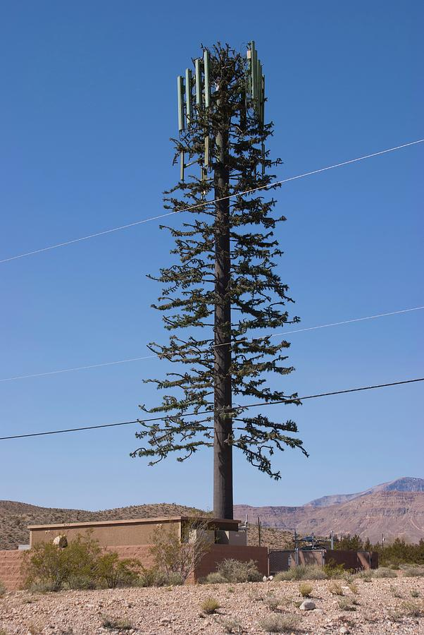 Aerial Photograph - Cellphone Mast Disguised As Tree by Mark Williamson/science Photo Library