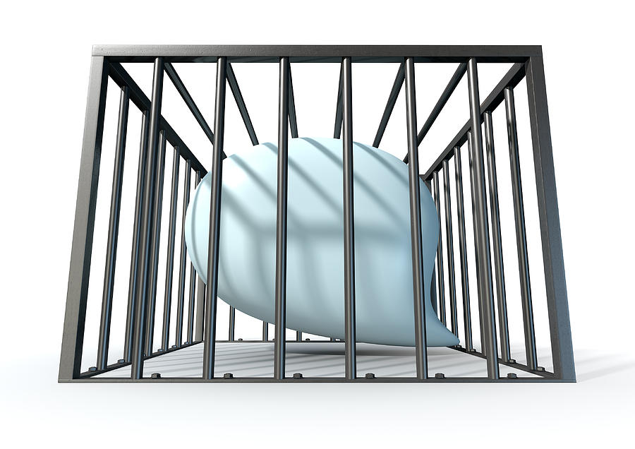 Jail Digital Art - Censorship Of Speech Caged by Allan Swart
