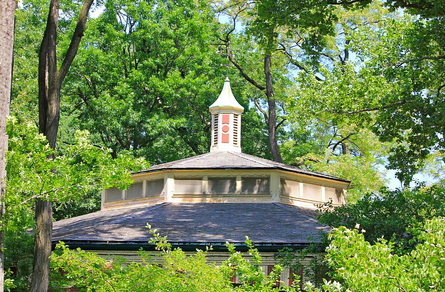 Central Park Building Photograph