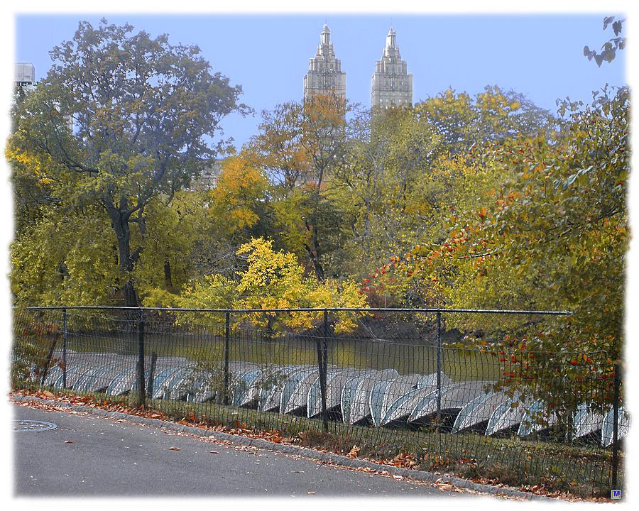 Central Park Photograph - Central Park In Autumn 2 by Muriel Levison Goodwin