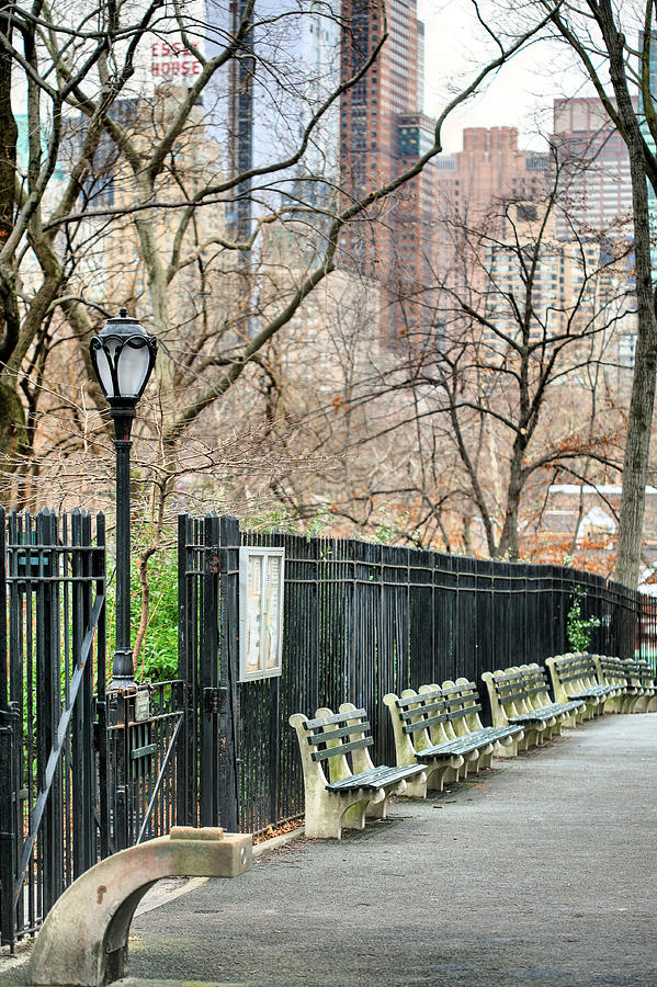 Central Park Photograph - Central Park by JC Findley