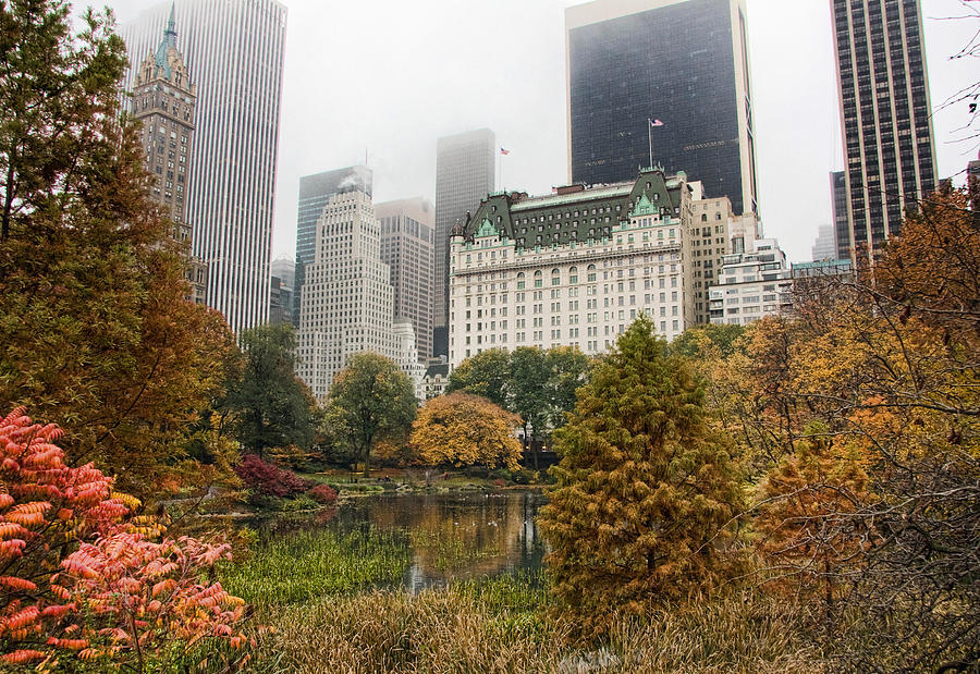Central Photograph - Central Park by June Marie Sobrito