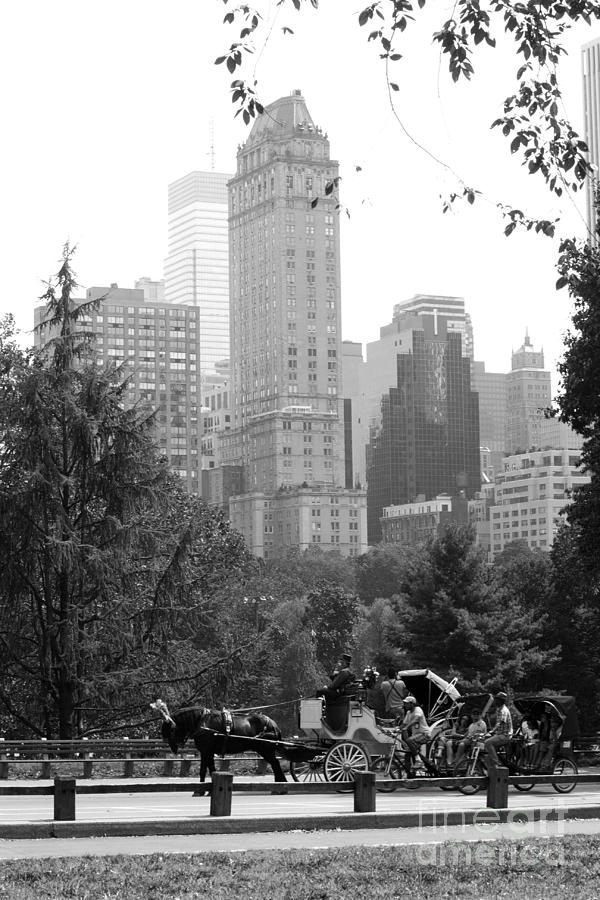 New York City Photograph - Central Park by Kristi Jacobsen