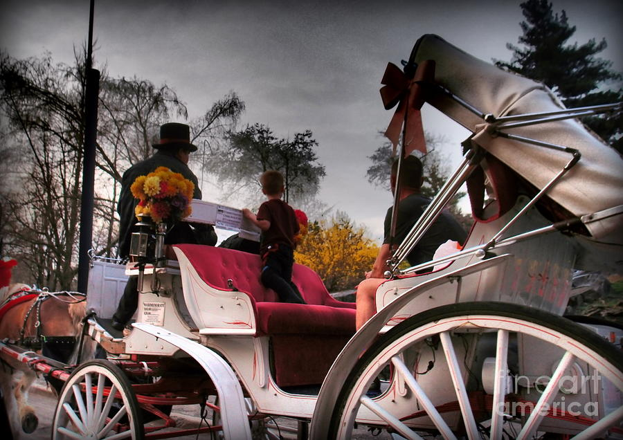 Ny Photograph - Central Park New York - Romantic Carriage Ride 2 by Miriam Danar