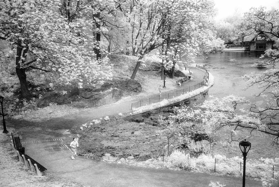 Nyc Photograph - Central Park North Infrared by Dave Beckerman