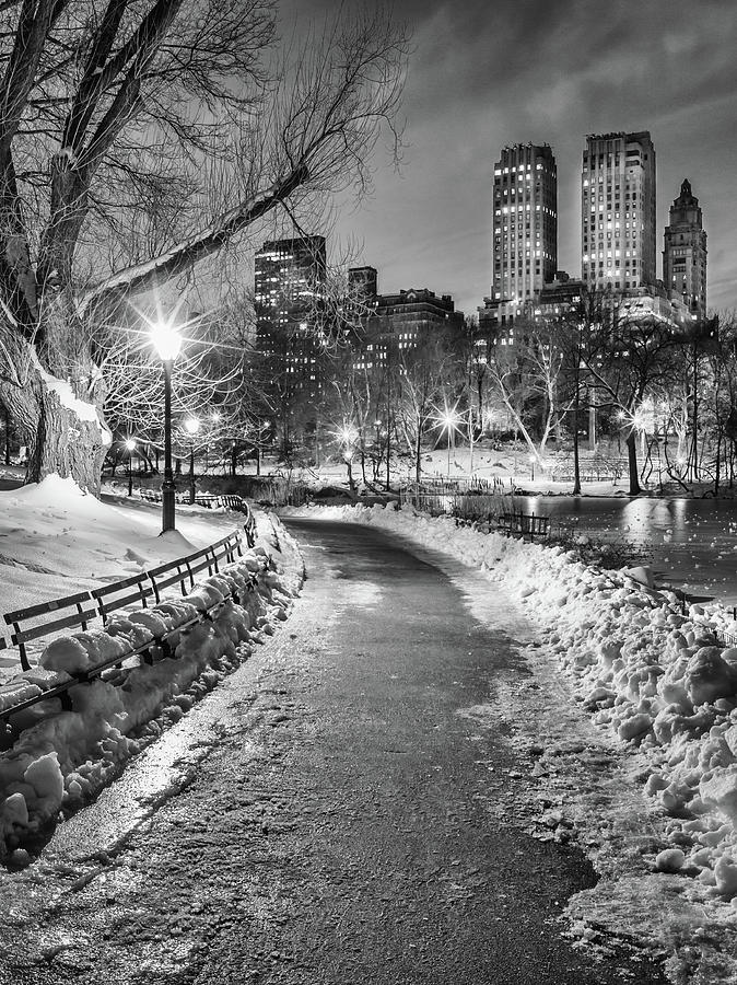 Central Park Path Night Black & White Photograph by Michael Lee