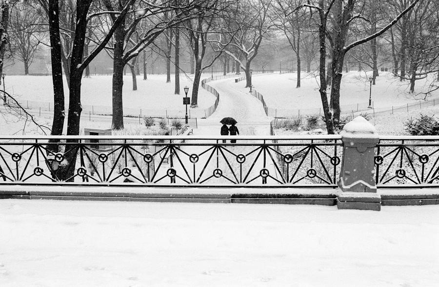 Central Park Snow by Dave Beckerman