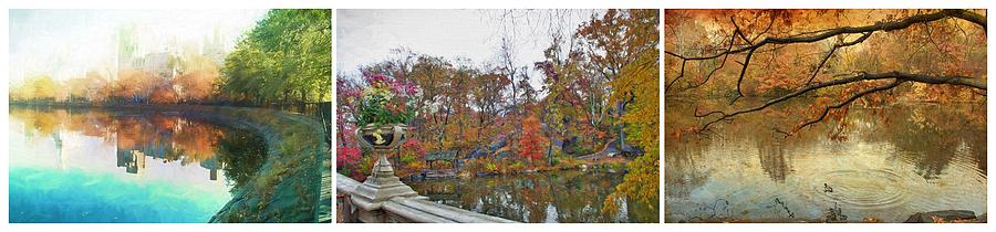 Central Park Photograph - Central Park Waterscapes by Alice Gipson