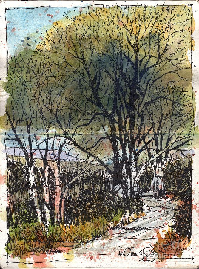 Ceta Canyon Drawing - Ceta Canyon Road by Tim Oliver