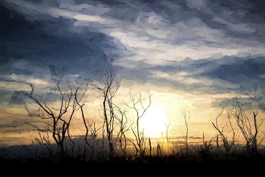 Landscape Photograph - Cezanne Style Digital Painting Stark Bush Silhouette Against Stunning Sunset Sky by Matthew Gibson