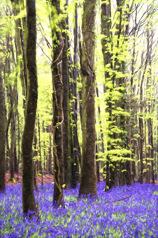 Landscape Photograph - Cezanne Style Digital Painting Vibrant Bluebell Forest Landscape by Matthew Gibson