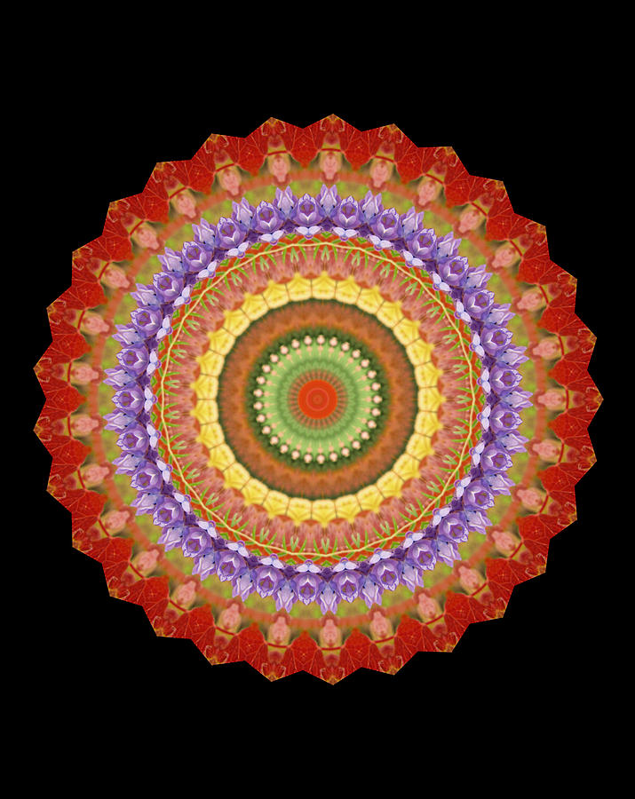 Chakra Photograph - Chakra Spin by Barbie Wagner