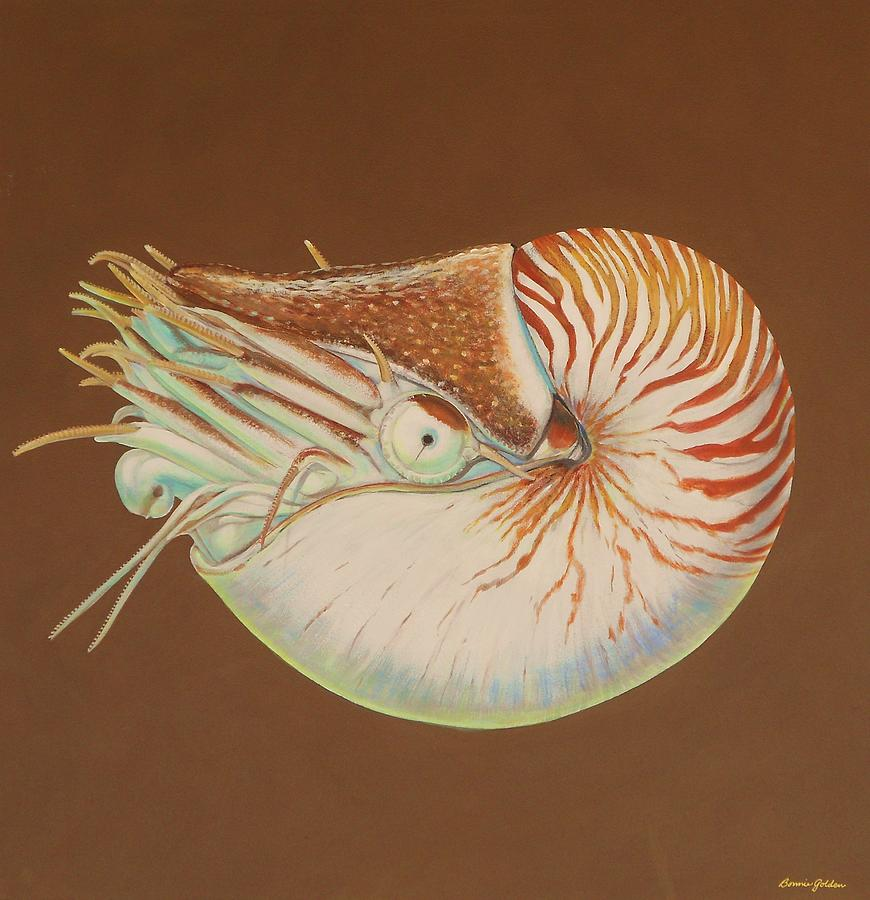Sea Shell Painting - Chambered Nautilus by Bonnie Golden