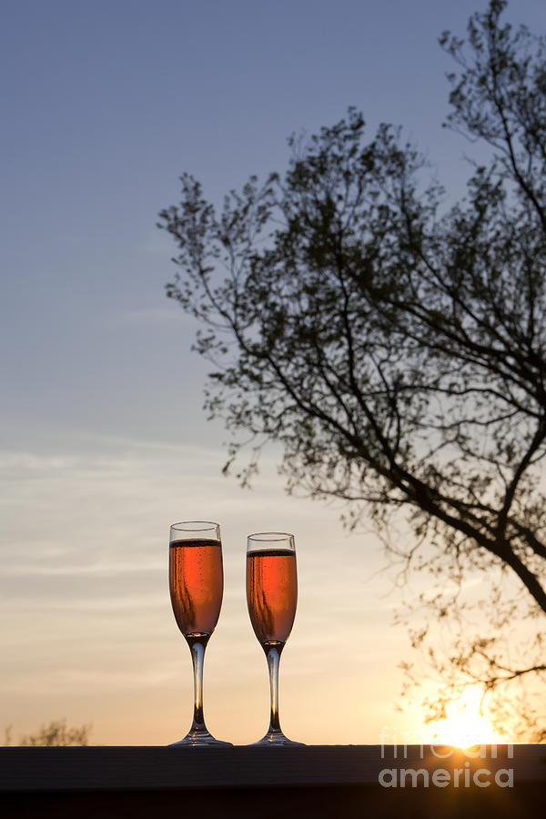 Champagne Photograph - Champagne For Two by Kay Pickens