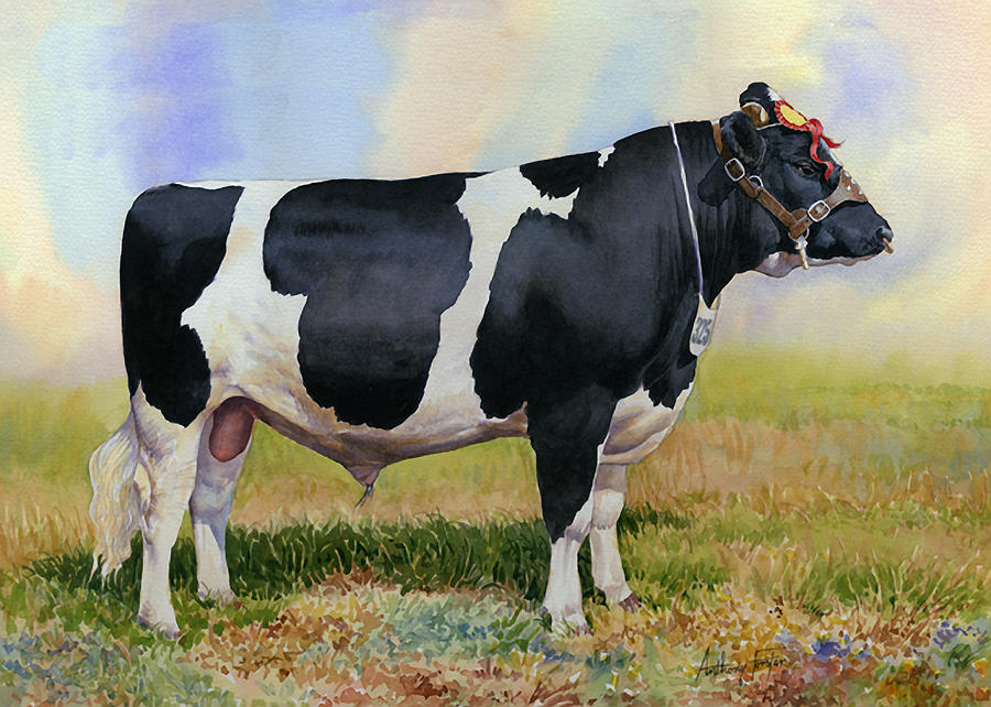 Cattle Painting - Champion Friesian Bull by Anthony Forster