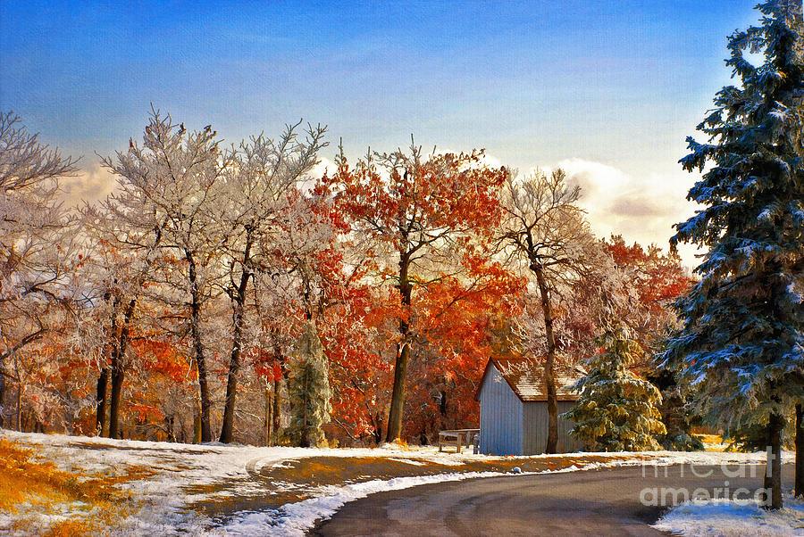 Landscape Photograph - Change Of Seasons by Lois Bryan