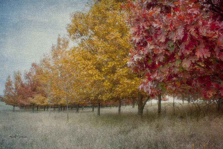 Changing Of The Seasons Photograph - Changing Of The Seasons by Jeff Swanson
