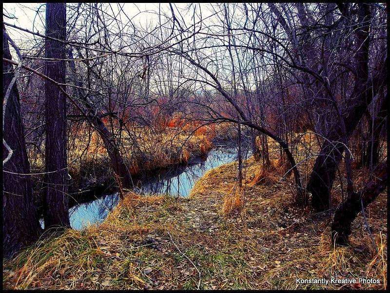 Stream Photograph - Chaotic Tranquility by Misty Herrick