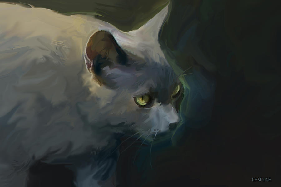 Chapline's Cat by Curtis Chapline