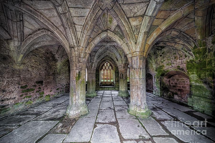 13th Century Photograph - Chapter House Interior by Adrian Evans