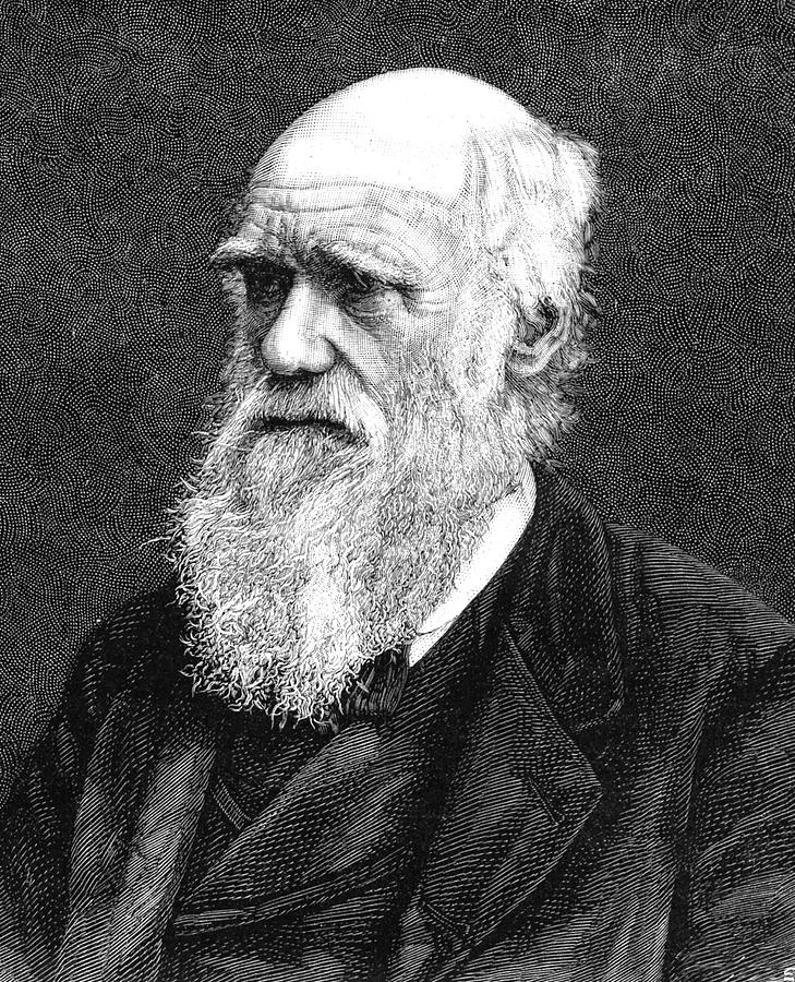 1885 Photograph - Charles Darwin by Collection Abecasis