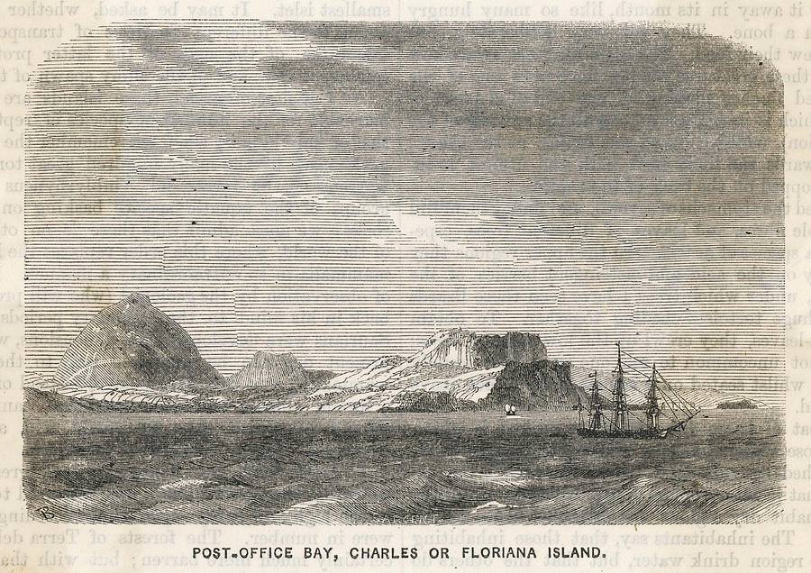 Galapagos Drawing - Charles (or Santa Maria/ Floriana) by Mary Evans Picture Library