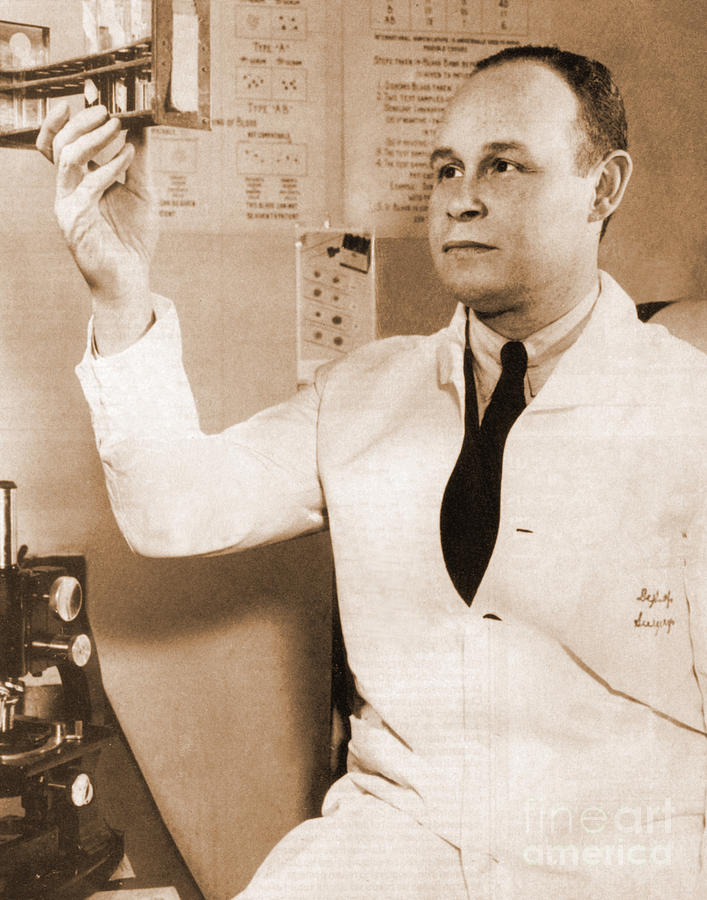 charles drew 600 words every high school student has had the story drummed into him: dr  charles drew, the brilliant negro medical researcher who.
