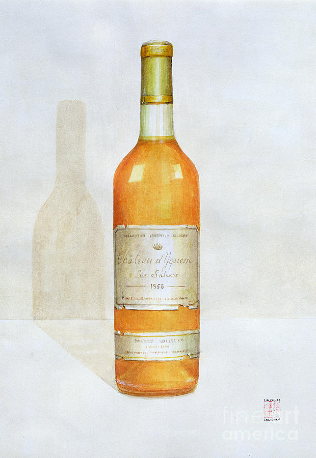 Wine Painting - Chateau D Yquem by Lincoln Seligman