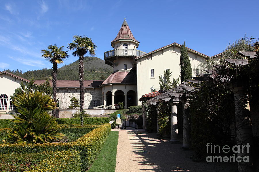 Sonoma Photograph - Chateau St. Jean Winery 5d22199 by Wingsdomain Art and Photography