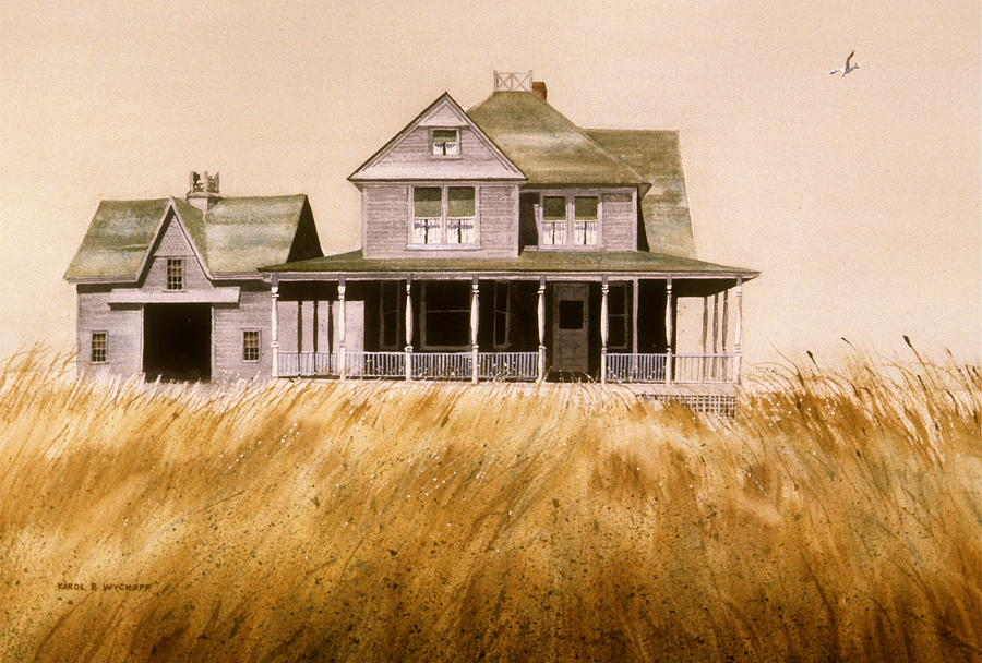 Seagull Painting - Chatham Derelict by Karol Wyckoff