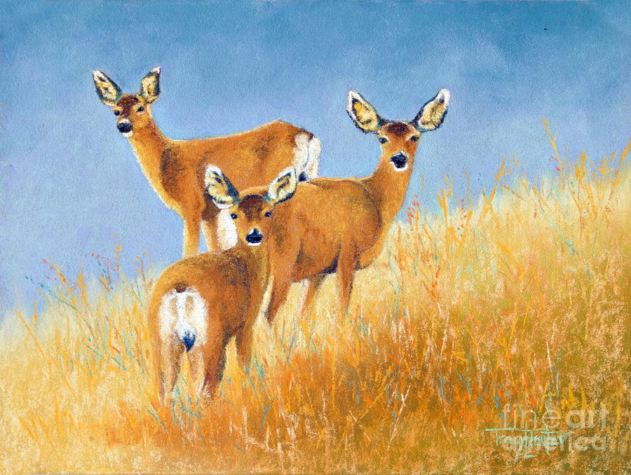 Deer Pastel - Checking The Back Trail by Tracy L Teeter
