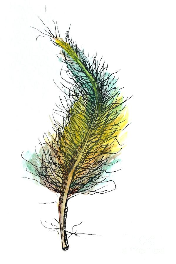 Cheerful Feather by Anne Clark