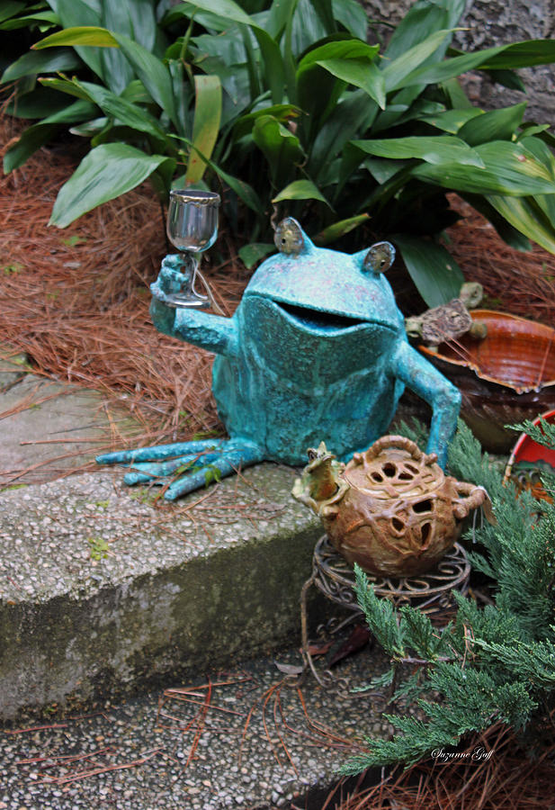 Frog Photograph - Cheers by Suzanne Gaff