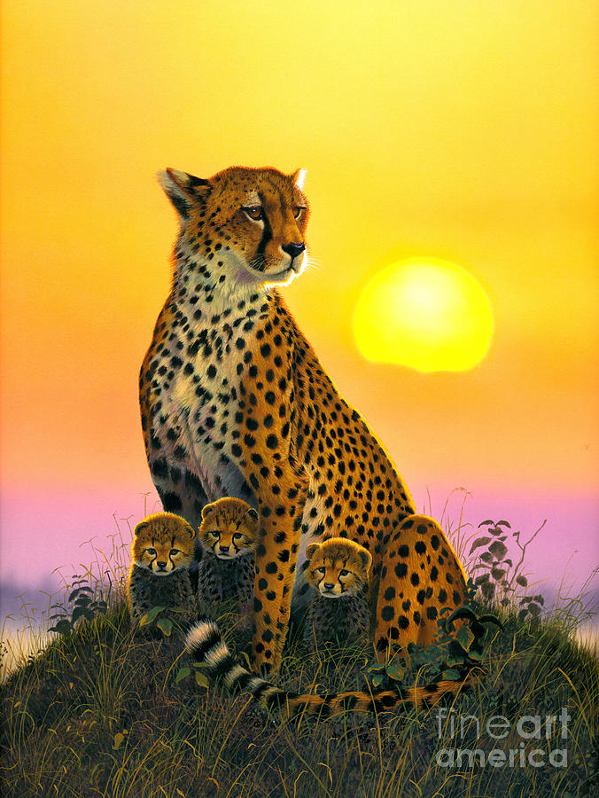 Cheetah Photograph - Cheetah And Cubs by MGL Studio - Chris Hiett