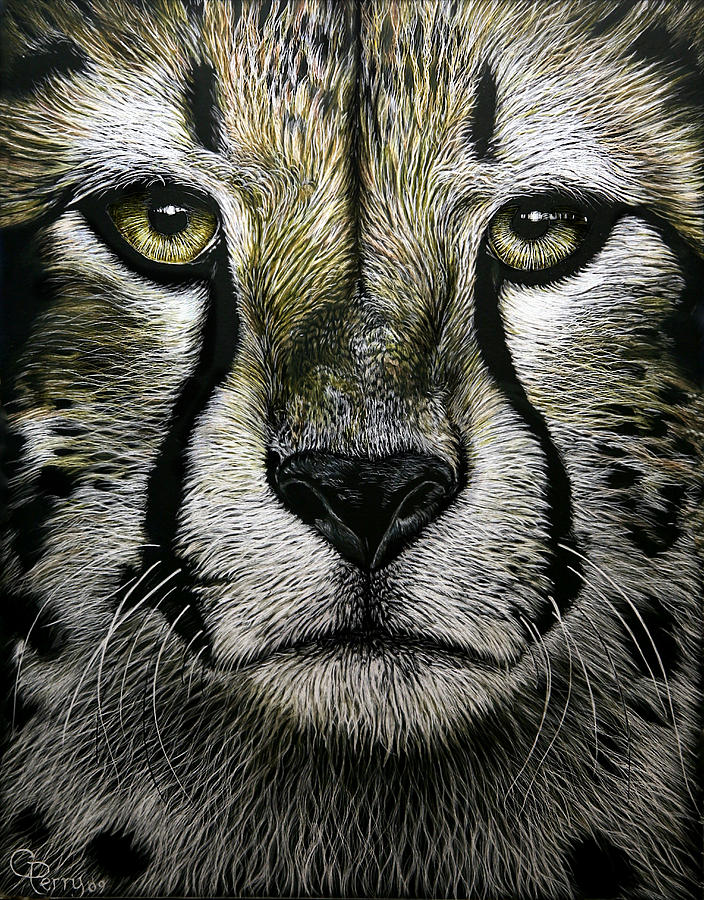 Cheetah Painting - Cheetah  by Chris Perry
