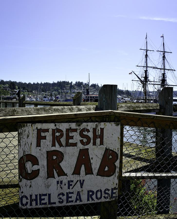 Newport Photograph - Chelsea Rose Crab by Image Takers Photography LLC - Carol Haddon