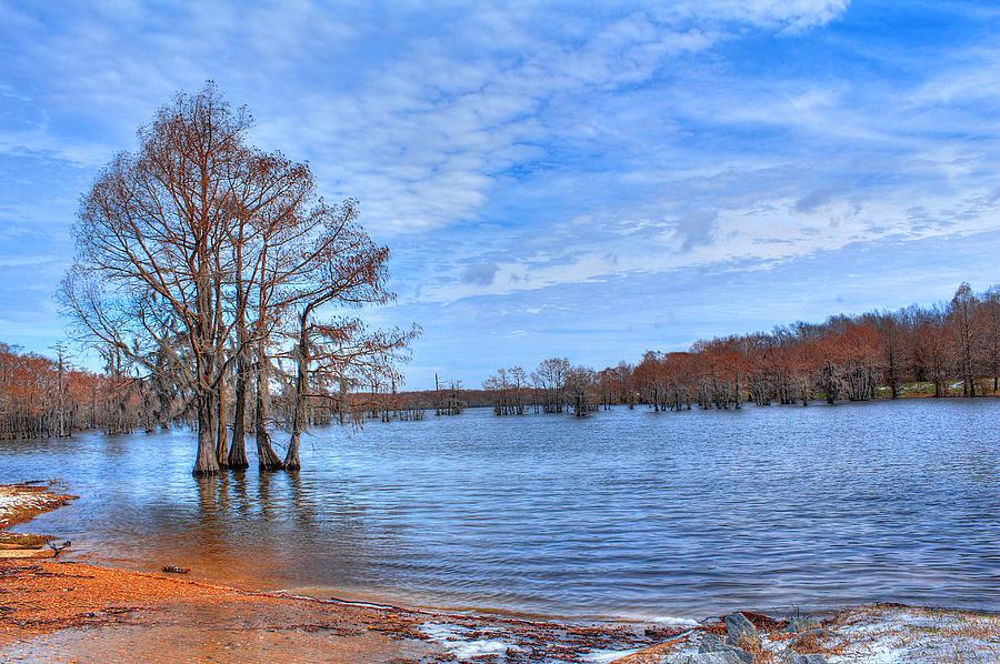Bayou Photograph - Cheniere Lake Waterscape by Ester McGuire